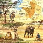 Serengetibd